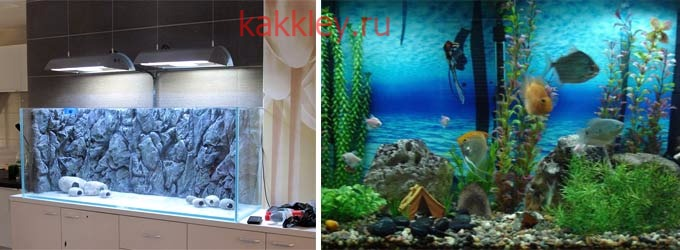 Как приклеить фон на заднюю стенку аквариума